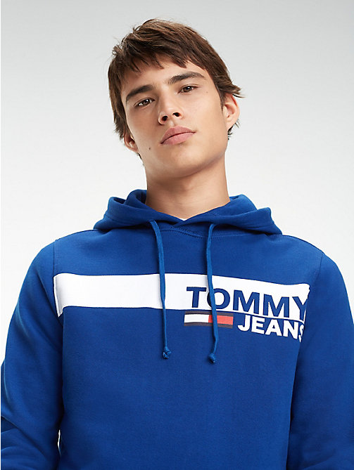 TOMMY JEANS Essential Graphic Hoody - LIMOGES - TOMMY JEANS Sweatshirts & Hoodies - main image