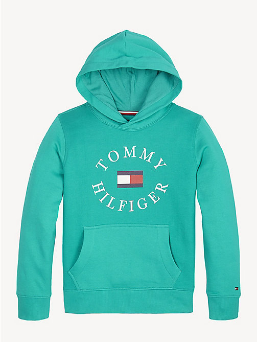 TOMMY HILFIGER Sweat à capuche et logo - DYNASTY GREEN - TOMMY HILFIGER Sweats - image principale