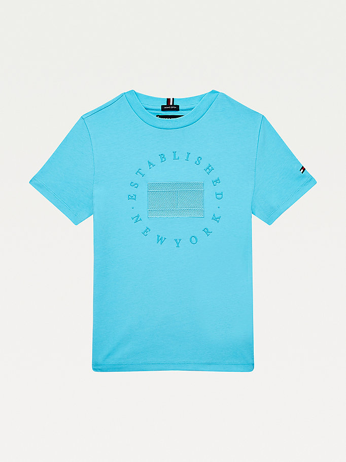 blue new york logo t-shirt for boys tommy hilfiger