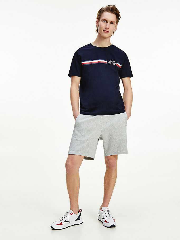 blue signature detailing organic cotton t-shirt for men tommy hilfiger